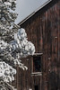 winter barn-3774