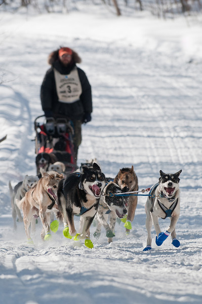 MNGN-11029: John Beargrease sled dog marathon