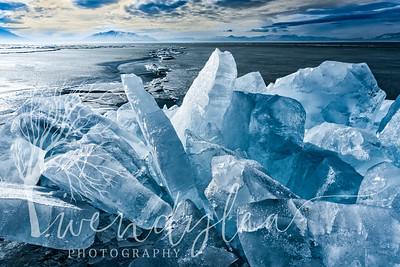 wlc Utah Lake State Park  642019-Edit