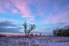 Twilight glow on the prairie