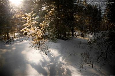 Mashkinonje Provincial Park, Ontario.