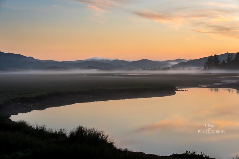valley fog-1336