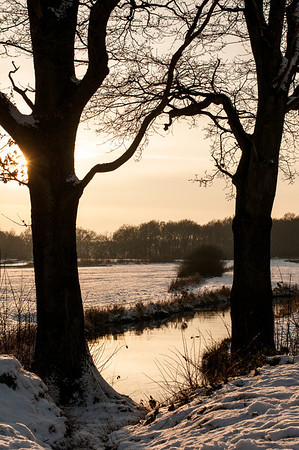 Winterlandschap de Strubben