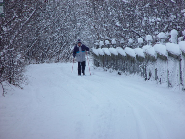 Enjoing winter in,PARC-DE-L'ILE-DE-LA-VISITATION,Le bon cote' de l'hiver.