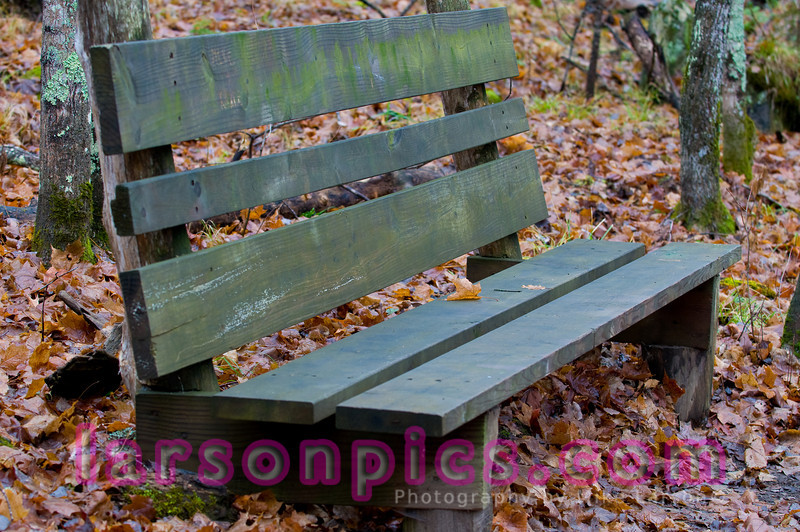 Lonely Trail Bench