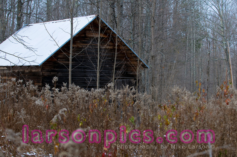 Rustic Horse Shed