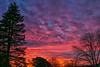 Sunset over Brookfield, WI neighborhood mid February