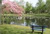 Bell Lake