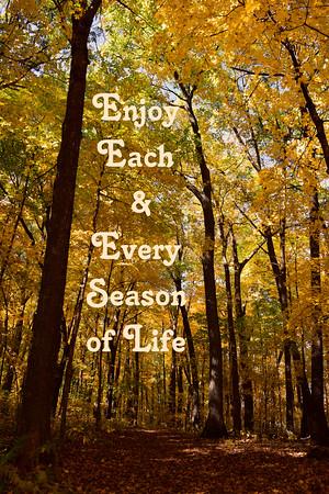 Enjoy Each and Every Season of Life