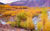 Wyoming, Jackson Hole, Fall Colors, Sunset, 怀俄明, 秋色