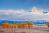Wyoming, Grand Teton National Park, Fall Colors, 怀俄明, 大提顿国家公园, 秋色