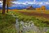 Wyoming, Grand Teton National Park, Mormon Barns , Fall Colors, 怀俄明, 大提顿国家公园, 秋色