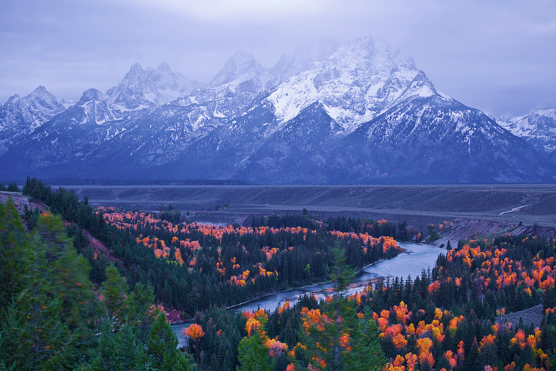 Wyoming, Grand Teton National Park, Snake River, Dawn, Fall Colors, 怀俄明, 大提顿国家公园, 秋色