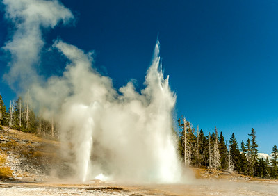 Geysers Together