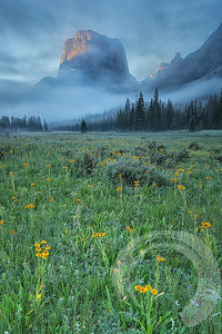 Misty Wyoming Mountains