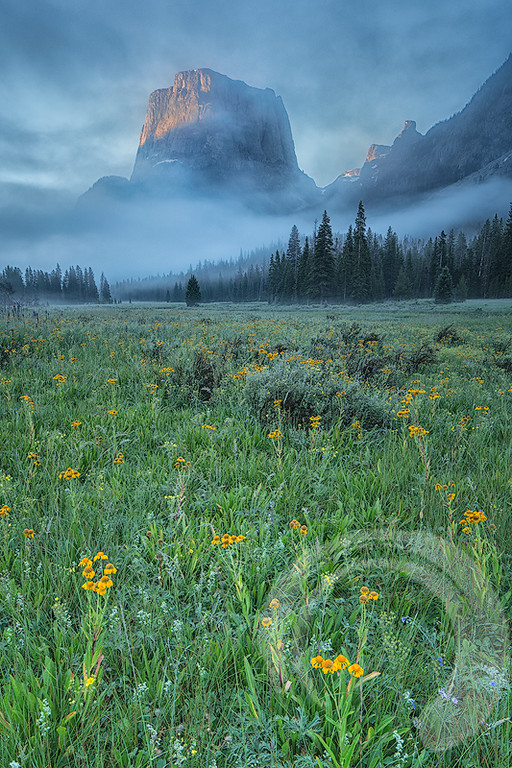 Misty Wyoming Mountains