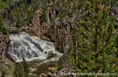 Gibon Falls, Yellowstone National Park, Wyoming