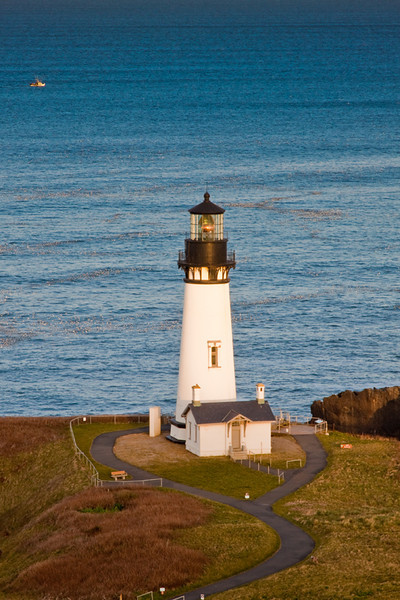 Yaquina Head Lighthouse, Oregon Coast from Salil Hill
