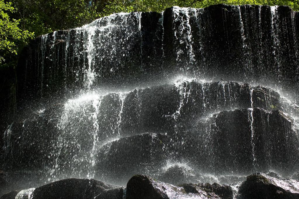 Yellow Branch Waterfall