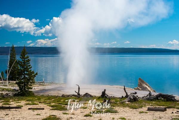 Yellowstone  6.16