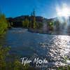 91  G Pilgrim Creek Sun
