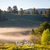 86  G Morning Fog