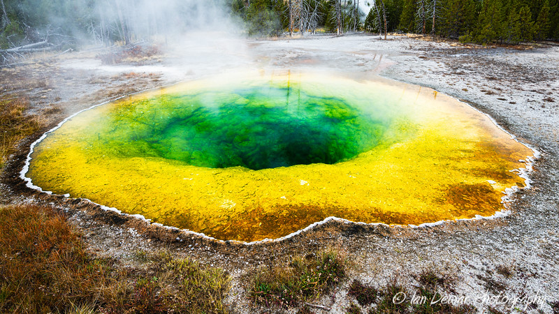 Morning Glory Pool in Yellowstone
