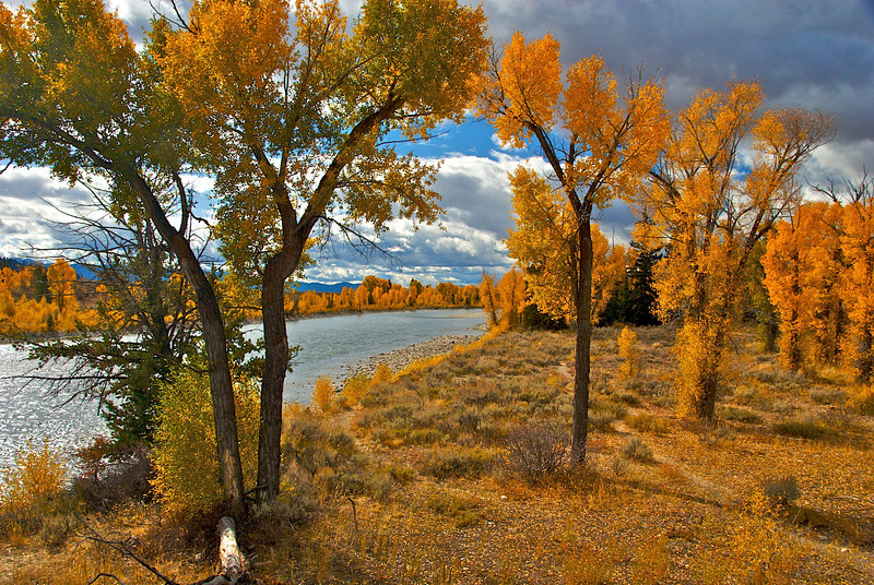 Fall on the Snake River in Wyoming.