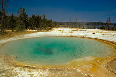 """Blue Funnel Spring""West Thumb Geyser Basin"