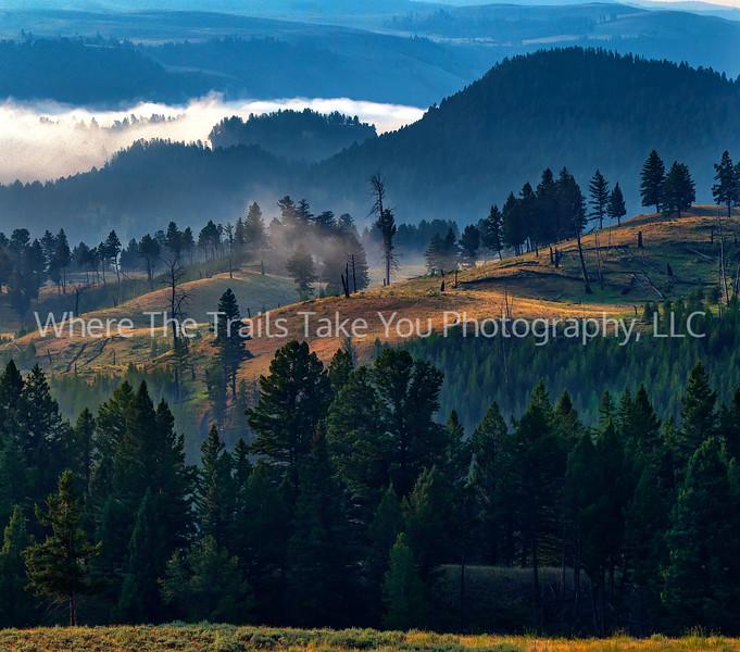 13. Morning In Yellowstone