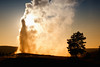 Old Faithful Geyser at Sunset