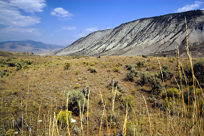 """Valley near Mammoth Hot Springs"""