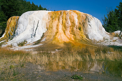 """Orange Spring Mound""h4>Mammoth Hot Springs"