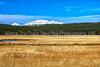Yellowstone Country