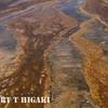 yellowstone-15