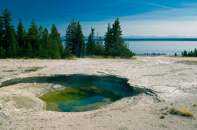 """Ledge Spring""West Thumb Geyser Basin"