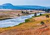 56. Yellowstone Scenery Looking Toward Midway Basin