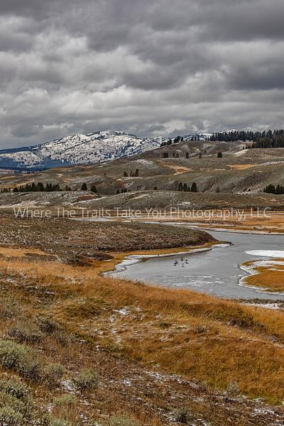 Hayden Valley Landscape