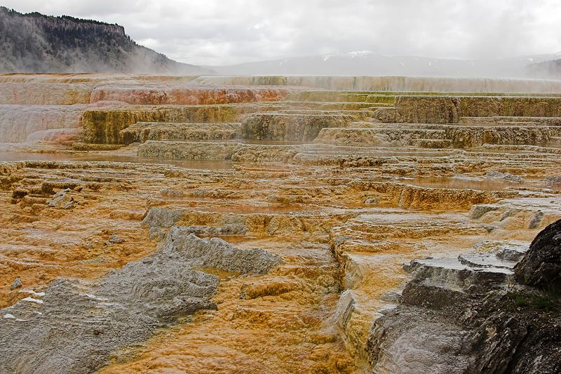 "<i><h2>""Mammoth Hot Springs""</i></h2>"