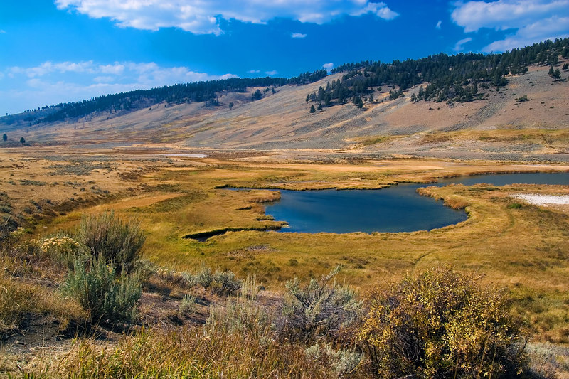 "<i><h2>""Valley near Mammoth Hot Springs""</i></h2>"