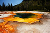 Emerald Pool, Black Sand Geyser Basin