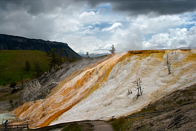 Mammoth Hot Springs - Minerva Terrace