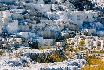 """Minerva Terrace""Mammoth Hot Springs"