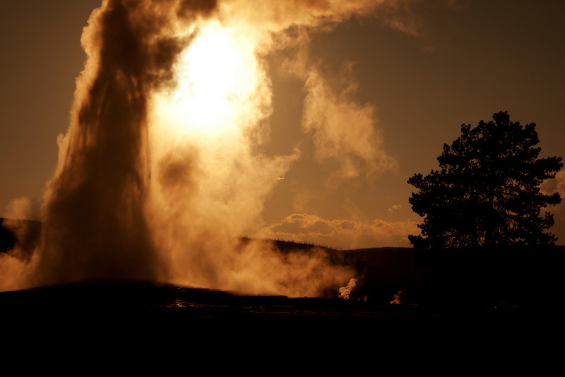 Old Faithful Geyser at Sunset, Upper Geyser Basin