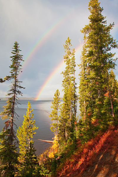 Lewis Lake Rainbow