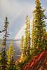 Lewis Lake Rainbow