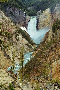 """Lower Yellowstone Falls"""