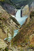 "<i><h2>""Lower Yellowstone Falls""</i></h2>"