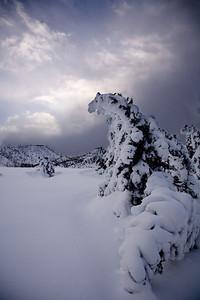Yellowstone_Geyser_Suset
