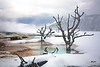 Yellowstone_Mammoth_Pool